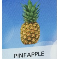 KIK E-CIGARETTE 6MG JUICE PINEAPPLE